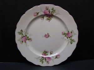 Canonsburg Pottery China Moss Rose Dinner Plate 10