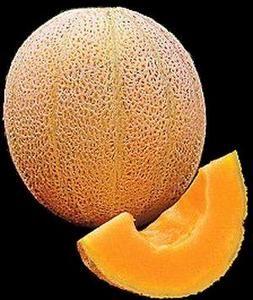 Hales Best Cantaloupe Cucumis Melo Seeds