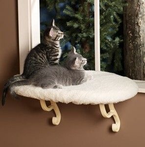 Unheated Kitty Sill for Window Cat Bed Perch Ortho