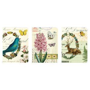 Set of three themed mini notebooks from Cavallini packaged together