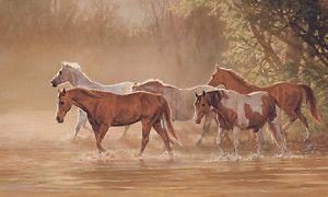 Misty River Horses 6x10 5 Feet Wallpaper Wall Decor Mural LM7959MMP