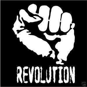 Revolution Che Guevara Vinyl Decal Sticker