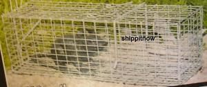 Animal Live Trap Rat Rodent Squirrel Chipmunk Rabbit