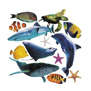 Sea Life Cutouts Shark Turtle Fish Dolphin Party Classroom Decorations