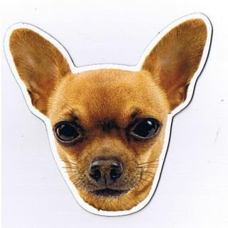 Chihuahua Dog Magnet Anywhere Car Magnet