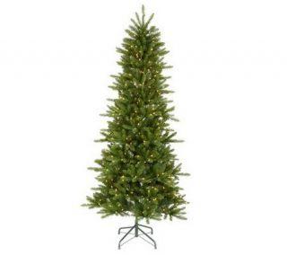 Knox Slim Pine Instant Shape Dura lit Treeby Vickerman   H351219