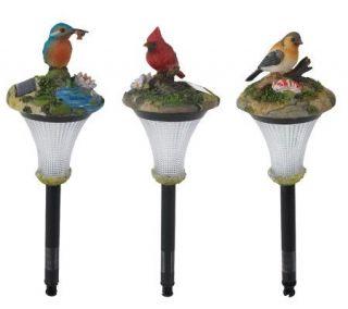 Westinghouse 3 pc. Single LED Solar Light Bird Set —