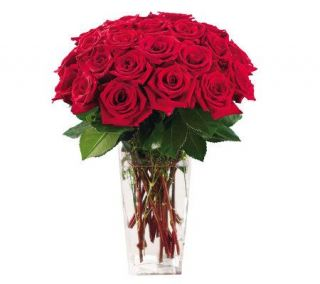 Two Dozen Red Rose Special with Vase by ProFlowers —