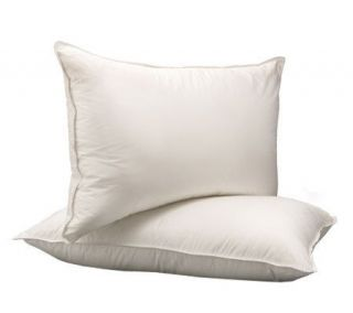 Northern Nights Set Of 4 Evendream Eurofeather Pillows Qn