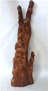 Vtg Mid Century Cypress Knee Organic Wood Sculpture 22