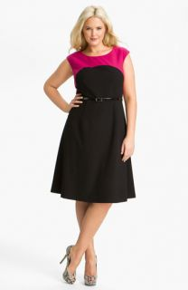 Calvin Klein Belted Two Tone A Line Dress (Plus)