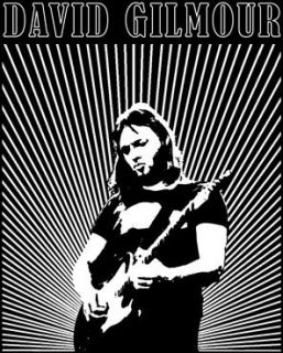 David Gilmour Gilmour Live Adult Tee Shirt s M L XL