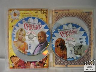 Pushing Daisies The Complete Second Season DVD 2