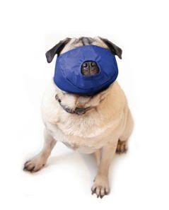 Dog Muzzle Pug Nose Four Flags Large