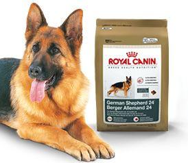Royal Canin Maxi Canine German Shepherd 24 Dry Dog Food