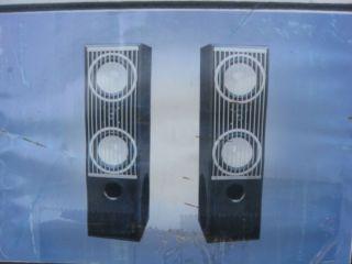 Dogg Digital Audio 2002 DA600SL Pro Series III Digital Tower Speaker