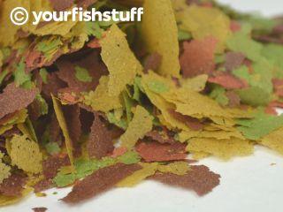 Bulk Your Fish Tropical Flakes Aquarium Fish Food 5lbs