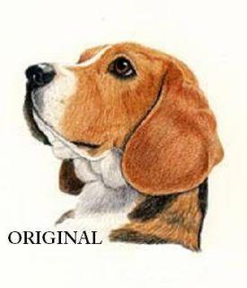 Beagle Portrait Cross Stitch Pattern Dogs TBB