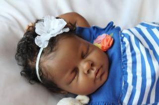 Gorgeous Reborn Baby Girl Ethnic AA Biracial Noah Sculpt by Reva