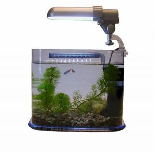 Tom Deco Nano Aquarium Fish Tank 1 Gallon