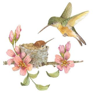Hummingbirds at Nest Mom Feeding Baby Hummingbird in Flight White T