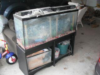 100 gallon fish tank hood 100 gallon aquarium stand for 50 gallon fish tank hood