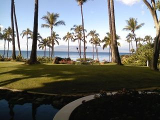 Cheap Airline Tickets to Hawaii and Mexico Consulting Services