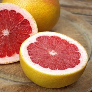 Grapefruit Pink Grape Fruit Tree Seeds