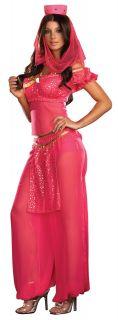 C538 Sexy Genie May K Belly Dancer Girl Adult Fancy Dress Halloween
