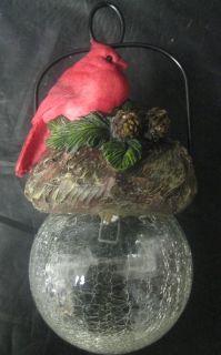 Cardinal Bird Sits on Hanging Glow Ball Solar Light Garden Art