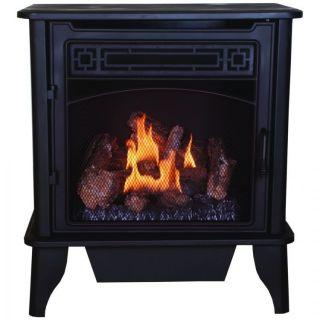 Free Natural Gas Propane LP Fireplace Stove PCSD25T Dual Fuel