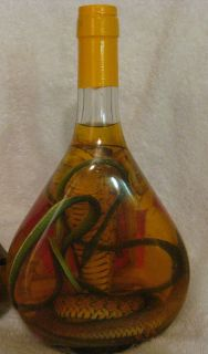 King Cobra Snake Wine Viper Green Snake Taxidermy LRG