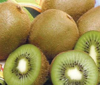 Combo Kiwi Plants Set Male Female Great Fruit Must Have 2
