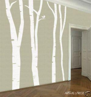 Wall Vinyl Decal Sticker Forest Birch tree 101 height