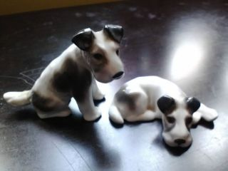 GOTHA E PFEFFER PORZELLAN porcelain black white dogs scotty schnauzer