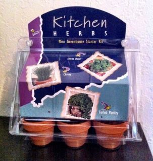 Buzzy Mini Greenhouse Starter Kit Kitchen Fragrant Herbs Windowsill