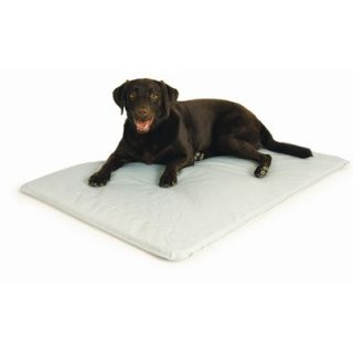 Hugs Pet Products Cool Cot Elevated Dog Bed
