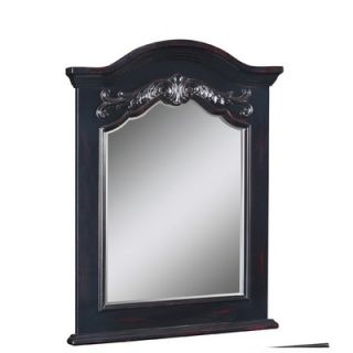 Belle Foret Carved Portrait 40 x 28 Bathroom Vanity Mirror in Hand