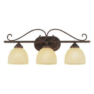 TransGlobe Lighting Three Light Bath Vanity in Rubbed Oil Bronze