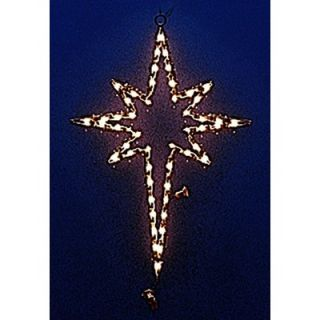 Holiday Lighting Specialists Small Star of Bethlehem