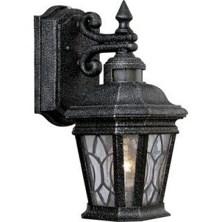 Progress Lighting Cranbrook Outdoor Wall Lantern in Gilded Iron