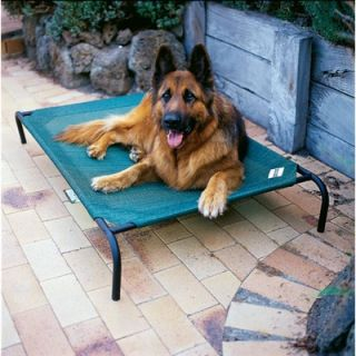 Coolaroo Elevated Indoor/Outdoor Pet Cot for Large Breeds   LgPetBed