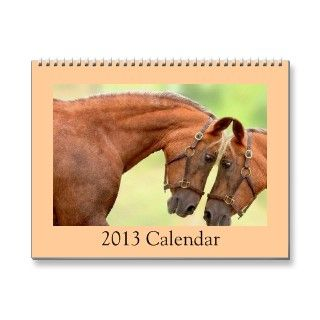 Harness Racing Horse Photo Calendar 2013.