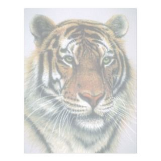 Siberian Tiger head Letterhead Template