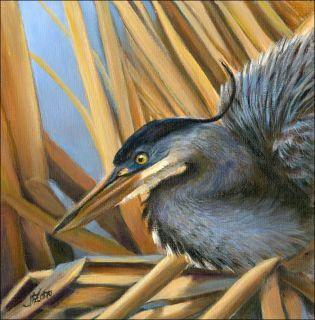 Beautiful Heron Original Oil Hand Painting 6 x 6