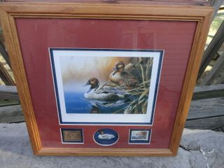 Holzman 1999 2000 Ducks Unlimited Duck Stamp and Print 286 1250