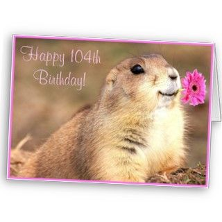 Happy 104th Birthday Prairie dog greeting card