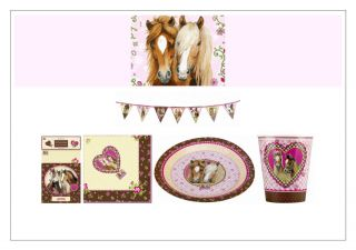 Horse Pony Party Supplies from Die Spiegelburg Cups Plates Napkins