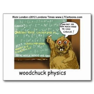 Woodchuck Physics Funny Tees Mugs Gifts Etc Post Cards