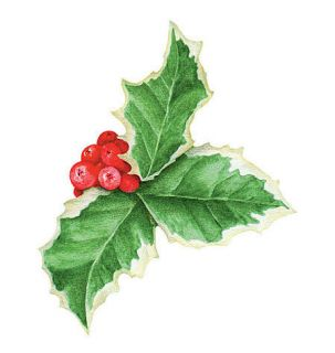 Holly Clusters 25 Leaf Berries Decals Stickers Wallies Berry Christmas